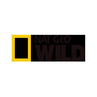 nat-geo-vayld-onlayn